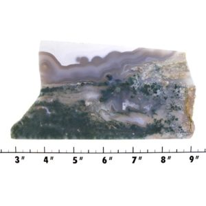 slab1439 - green moss agate