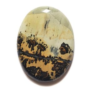 Cab1389 - Paint Brush Jasper Cabochon