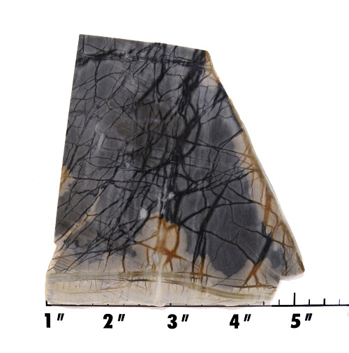 slab1198 - picasso marble
