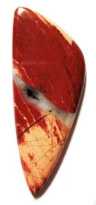 featured jasper red snakeskin