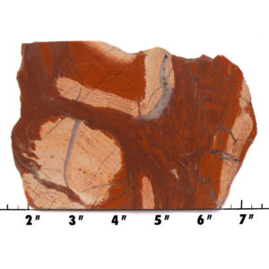 slab1346 - Red Snakeskin Jasper