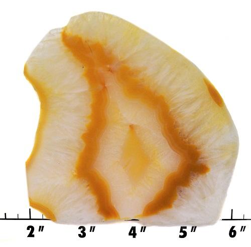 slab654 - carnelian agate
