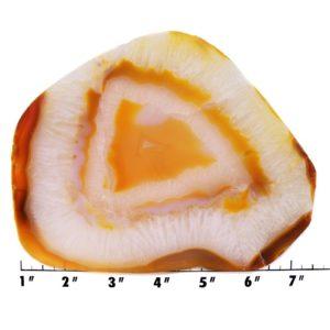 slab1020 - carnelian agate