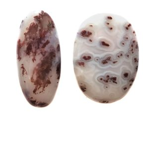Carey Plume Agate Cabochons from Oregon