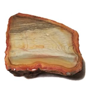 Polychrome Jasper Rough #6