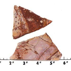 Slab619-Dynasty Jasper