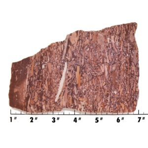Slab570-Montana Bark Jasper