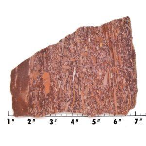 Slab602-Montana Bark Jasper