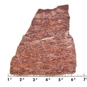 Slab603-Montana Bark Jasper