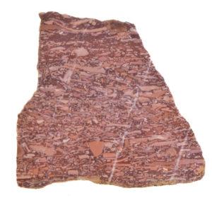 Montana Bark Jasper Slabs from Montana