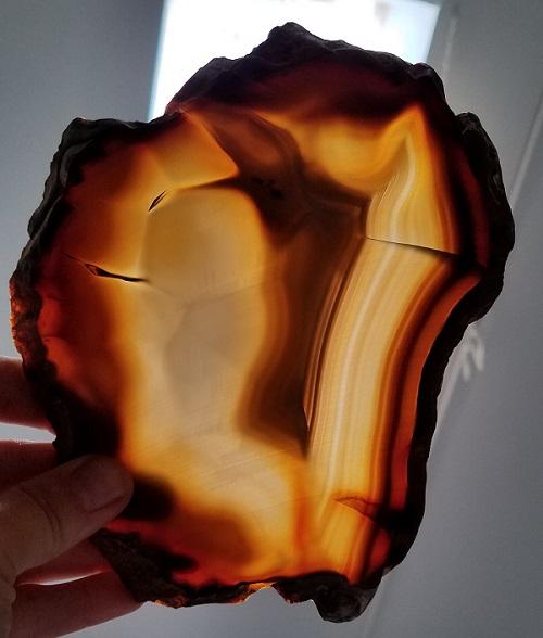 Slab740 - Piranha Agate