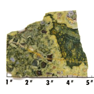 Slab904-Rainforest Jasper