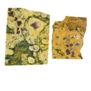 Rainforest Jasper (Rhyolite) Slabs from Australia