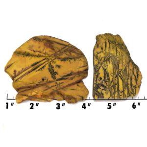 Slab1488-Sonoran Dendritic Jasper