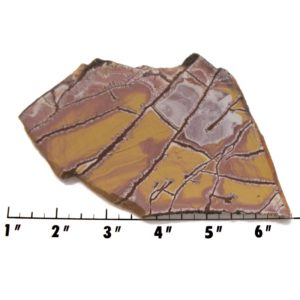 Slab1418-Sonoran Dendritic Jasper