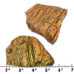 Slab1440-Sonoran Dendritic Jasper