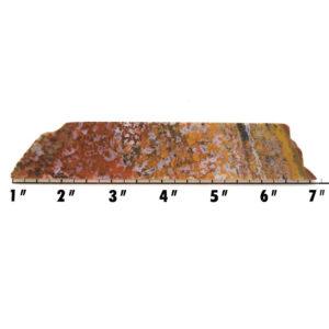 Slab187 - Bloody Basin Agate