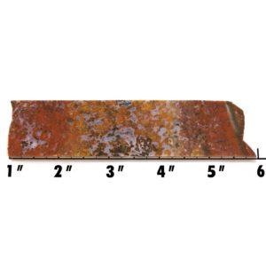 Slab19 - Bloody Basin Agate