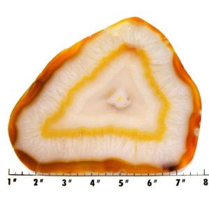 Slab1800 - Carnelian Agate