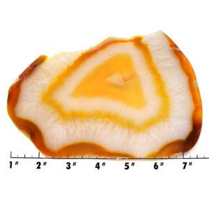 Slab1804 - Carnelian Agate