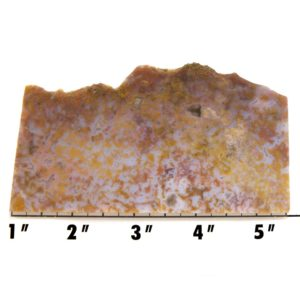Slab16-Cinco de Mayo Agate