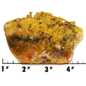 Slab1210 - Graveyard Point Plume Agate