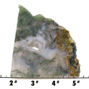 slab1783 - green moss agate