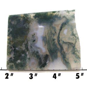 slab1798 - green moss agate