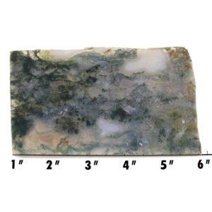 slab1799 - green moss agate