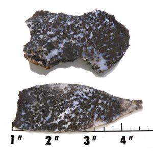 Slab1351 - Medicine Bow Plume Agate