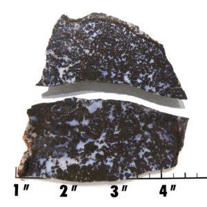 Slab1382 - Medicine Bow Plume Agate