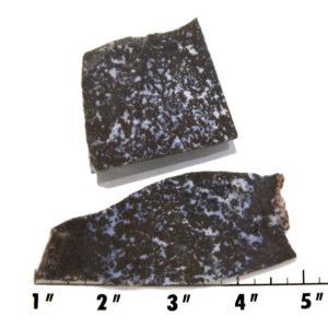 Slab1387 - Medicine Bow Plume Agate