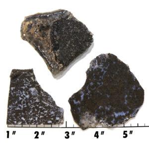 Slab1400 - Medicine Bow Plume Agate