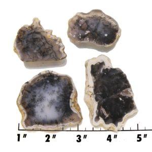 Slab1758-Moss Agate Slab