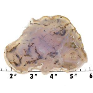 Slab1314-Moss Agate Slab