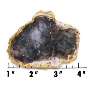 Slab1328-Moss Agate Slab