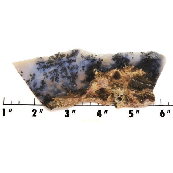 Slab21-Parral Dendritic Agate