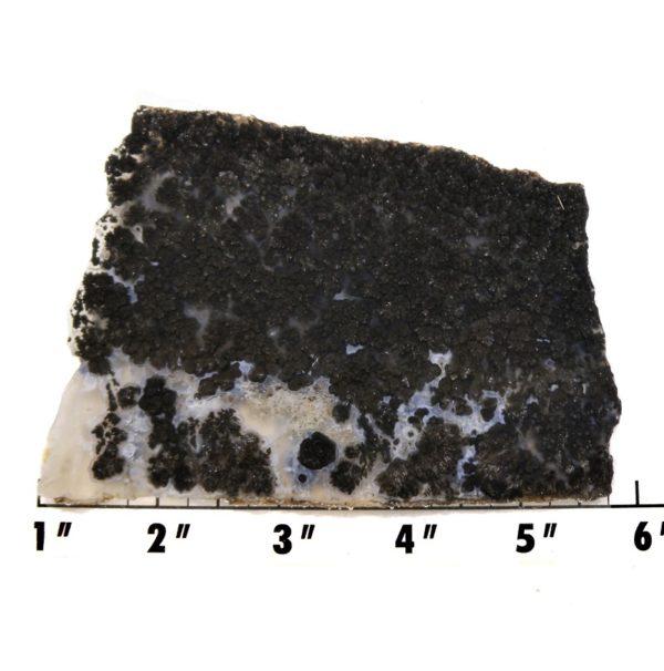 Slab2150-Parral Dendritic Agate