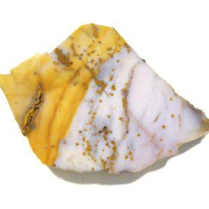 Polka Dot Jasper Slabs from Oregon