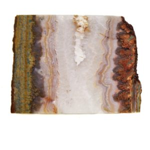 Prudent Man Plume Agate Slabs from Idaho