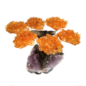Amethyst tree - 6 top