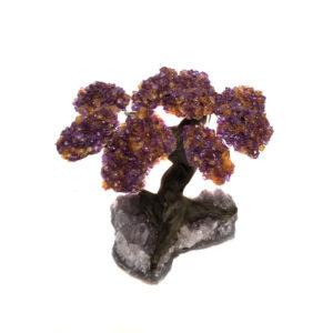 Amethyst Tree - 10 top