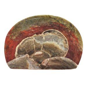 Cab1 - Mushroom Rhyolite Cabochon