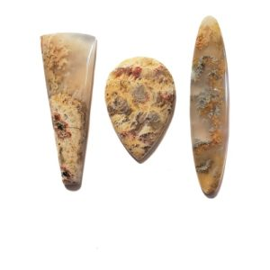 Regency Rose Plume Agate Cabochons from Idaho