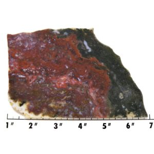 Slab1067 - Maury Mountain Moss Agate Slab