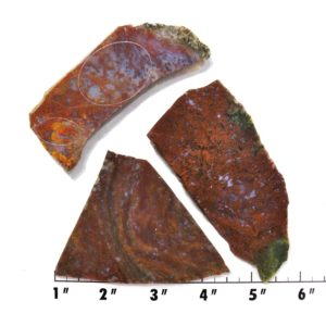 Slab117 - Maury Mountain Moss Agate Slab