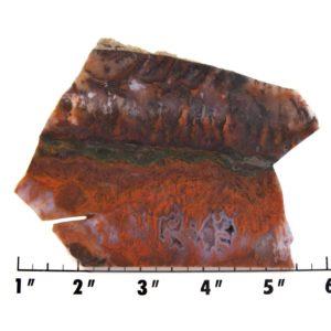 Slab1369 - Red Flame Agate Agate Slab