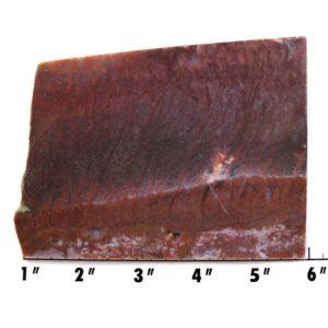 Slab1246 - Red Flame Agate Agate Slab