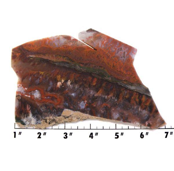 Slab1247 - Red Flame Agate Agate Slab