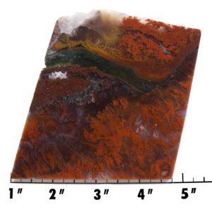 Slab1270 - Red Flame Agate Agate Slab